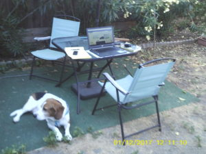 Dog-blogging Magnitude of the Bad